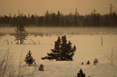 Февральский тундровый туман