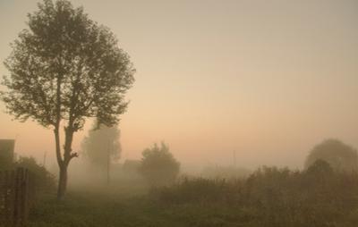 К закрытию сайта! Уходим.... в туман..    Утро туманное, утро седое