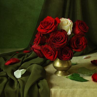 Натюрморт с розами. желательно на черном :)