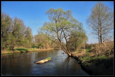 Весна... река Истра солнечный день