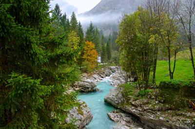 Национальный парк Триглав , Словения . Осень Путешествия Словения Река .Природа