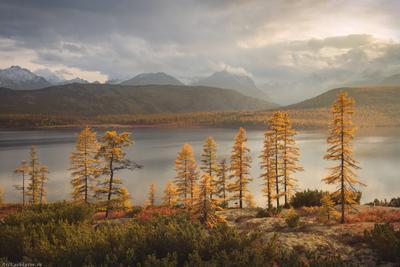 """""""Озеро Джека Лондона"""" Колыма Дальний Восток Магаданская область озеро Джека Лондона краски осени осень"""