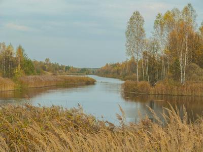 Теплый октябрь 2 вода деревья осень