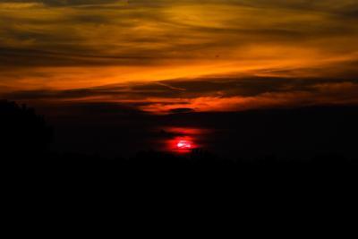 Z-оrro) zorro зорро закат солнце облака горизонт небо сумерки z