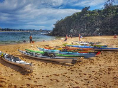 *** Sydney Manly Beach Shelly