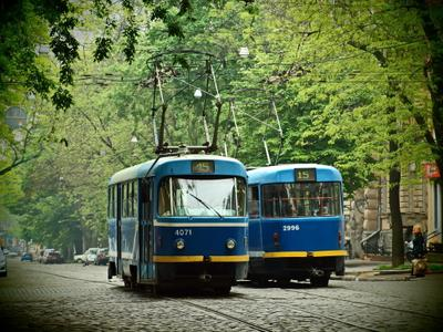 Тут трамваи ходят парой