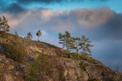В погоне за закатным светом. Конец октября. Ладога. закат камень облака небо свет сосны деревья фотограф ладога карелия шхеры