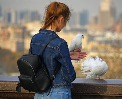 Девушка и голуби