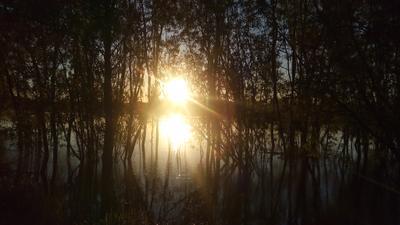 Раннее утро утро солнце вода рассет
