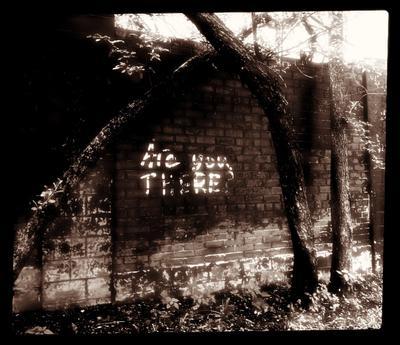 Are You There? стена надпись мрачно нуар