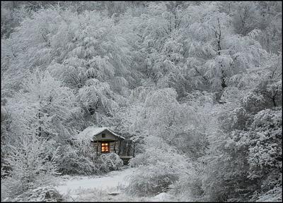 В снеге домик обнялся...