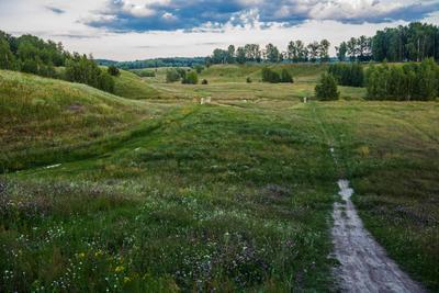 *** природа пейзаж татарстан новочувашский дорога холмы лето вечер