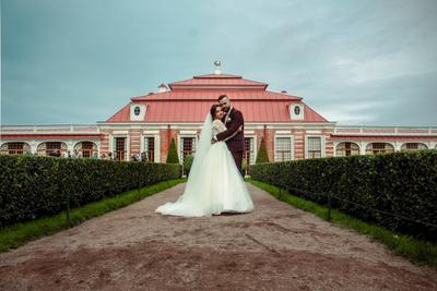 wedding свадебное фото