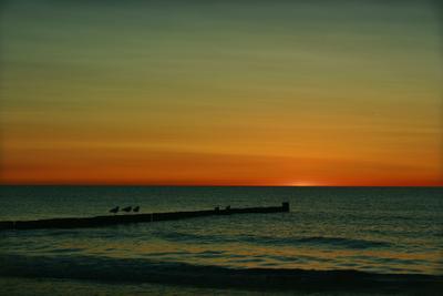 last ray море балтика закат чайки вечер ostsee