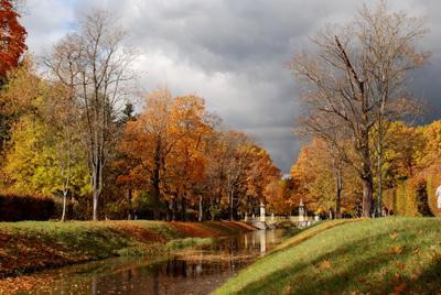 Осень Павловск Александровский парк осень природа