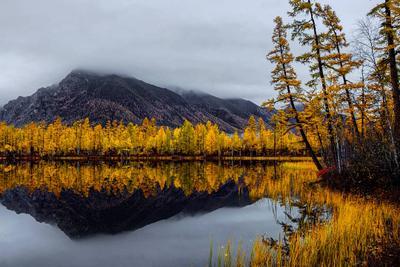 НАСТРОЕНИЕ - ОСЕНЬ 5. Забайкалье Осень Лиственница Кодарский Хребет Озеро