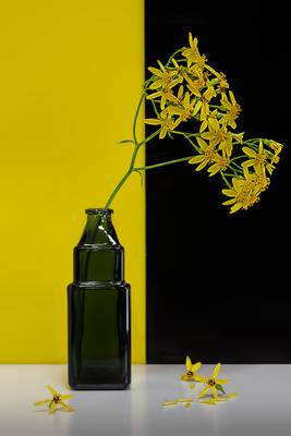 Relativity Натюрморт арт-фото цветы стекло