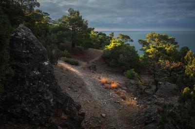 На крымских тропинках Новый Свет Крым сосны тропа октябрь море скала тучи солнце