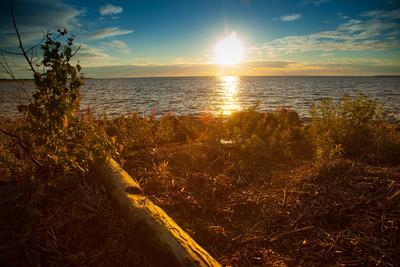Закат на холодном берегу. закат море