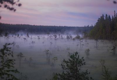 Туманное утро в Карелии