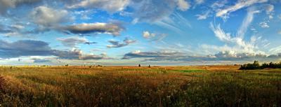 Август вечер, поле, облака, на закате, травы, небеса