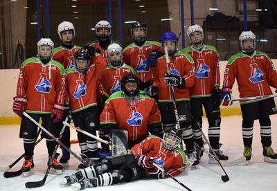 Будущие чемпионы дети сорт хоккей