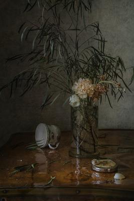 Про чашку и цветы натюрморт стекло фарфор цветы ракушки
