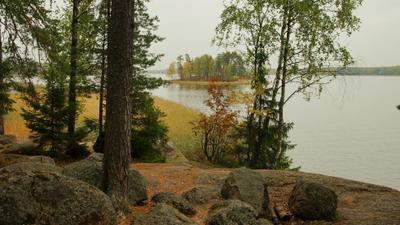 Пейзажи парка Монрепо Парк Монрепо осень острова Финский залив