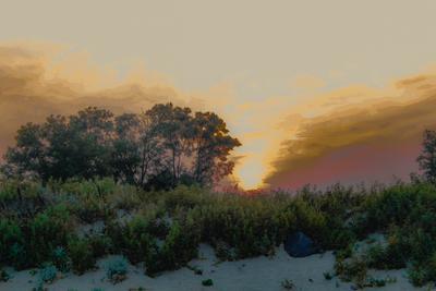 ***Белосарайский закат Закат берег море Белосарайская фото конкурс пейзаж