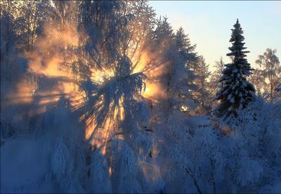 Солнечное шоу зима январь мороз солнце Ухта Коми 18.01.2021