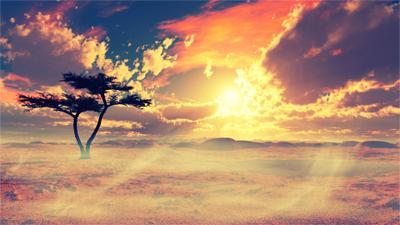 Pride of Africa Pride of Africa пейзаж дерево саванна