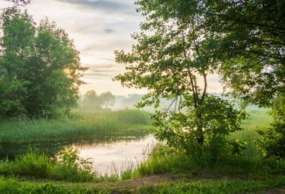 Вечерняя дымка над рекой лето вечер природа пейзаж дымка солнце река Усманка Воронеж