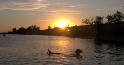 хороши купания на закате солнца хороши купания на закате солнца