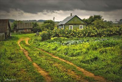 Хуторок. природа флора цветы пейзаж деревня