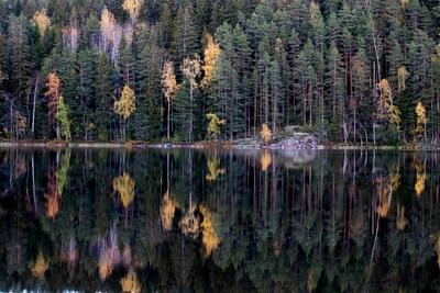 *** Финляндия