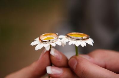 *** руки цветы ромашки кольца любовь вместе природа