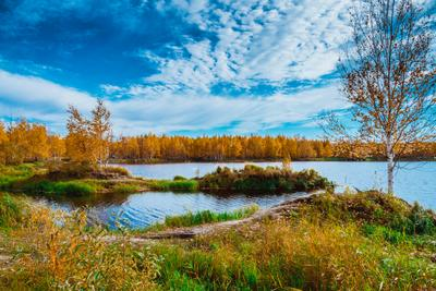 В гостях у осени! (В) Осень Тайга Лес