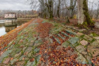 В камне берег озеро осень