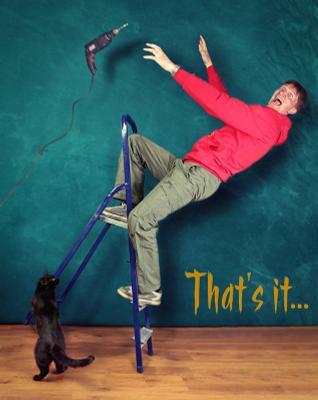 Вот и всё... кот лестница падение