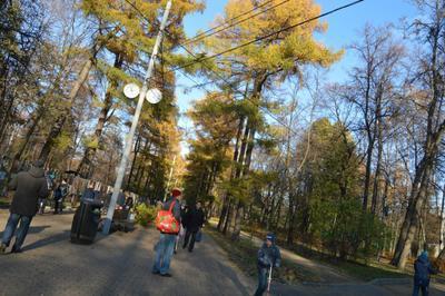 А вот и осень наступила.Контрасты