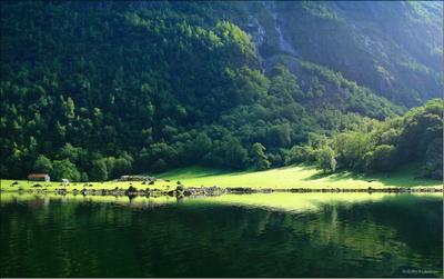 Берега Нероуфьорда 2 Норвегия, Нероуфьорд, солнечный распадок, поляна, сарай, поленица дров