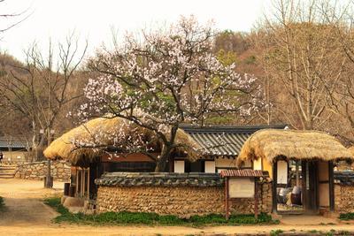 Весна в Корейской Деревне