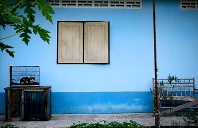 *** тайская деревня