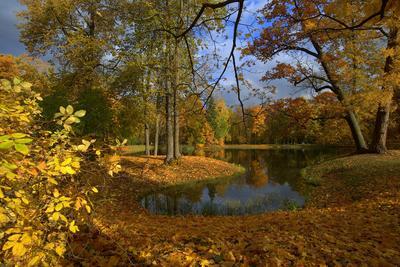 Осеннее настроение...