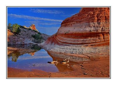 Красная Жара Аризона.Пейзаж