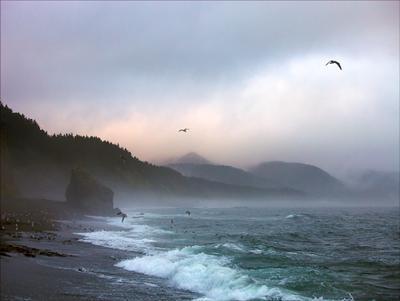 Осень на Охотском море Сахалин Охотское море осень мыс Великан
