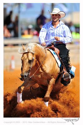 NRHA 2015 Derby NRHA 2015 Israel Reining Alex Goldenshtein Western Horse
