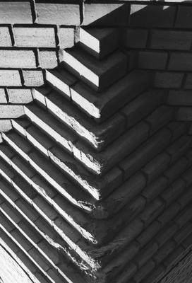 36590014 сосна санктпетербург чб архитектура аналоговаяфотография тень