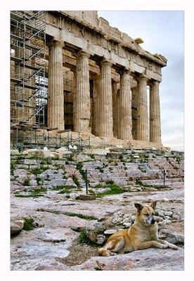Страж Акрополя или заметки из Греции часть вторая Греция, Акрополь