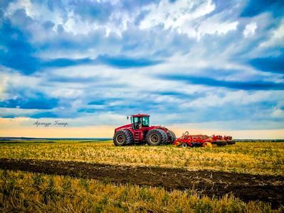 *** трактор поле небо